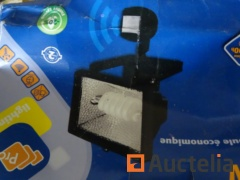 12 Spotlights with economical bulb + motion detector.