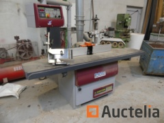 Long-table Spindle moulder with STETON T50L head coach