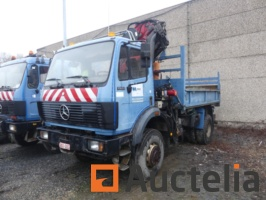 tribenne-truck-with-crane-mini-crawler-excavator-mercedes-sprinter-919210G.jpg